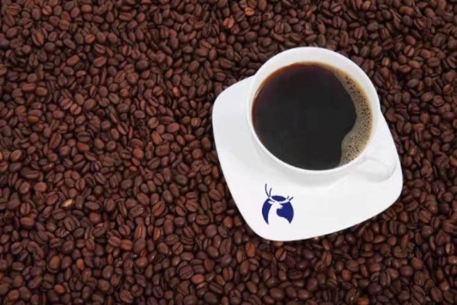 qita-kafei,
