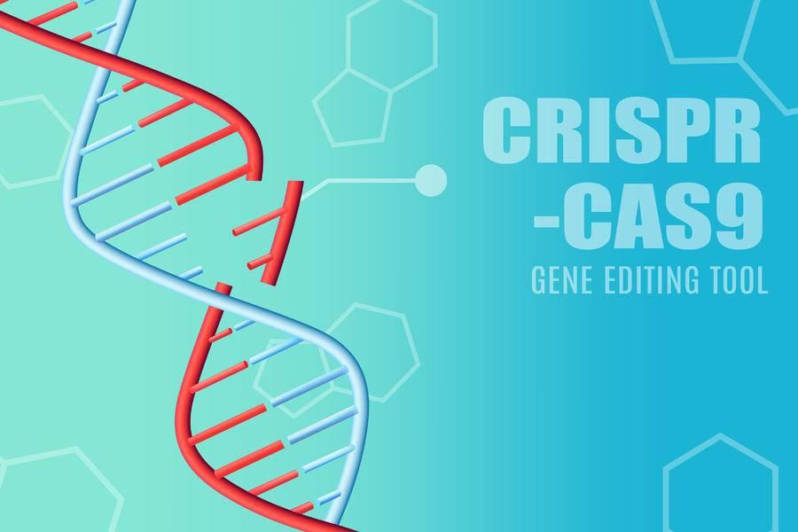 基因編輯技術獲諾貝爾化學獎,華人科學家張峰無緣獲