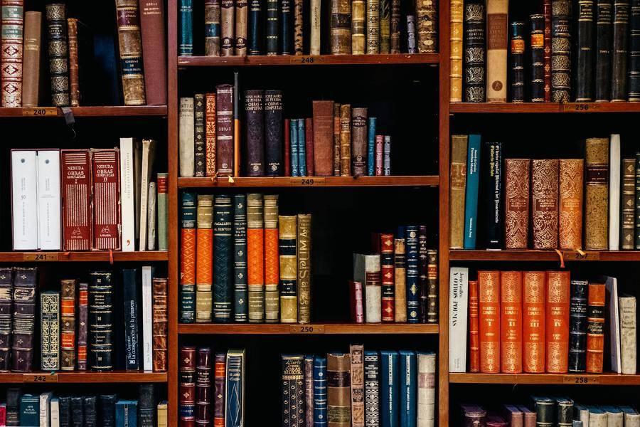 图书;政策,素质教育,创客教育,编程教育