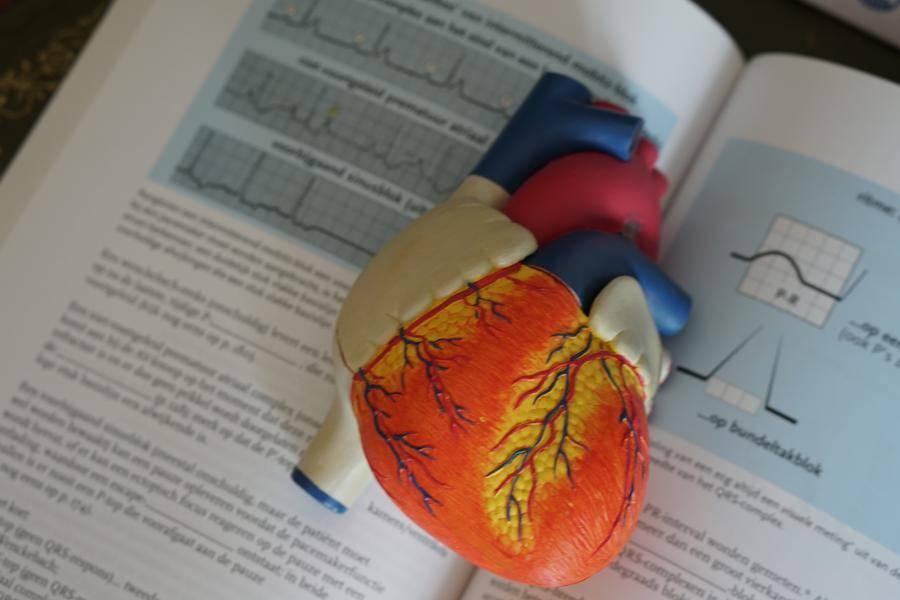 卫健委修订《人体器官移植条例》,加大违规打击力度