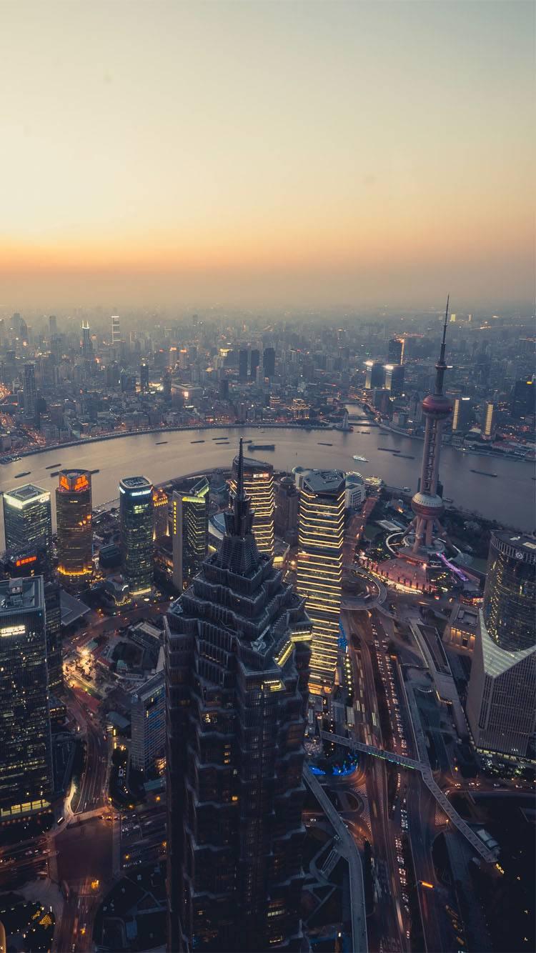 市值250强外商投资企业在华发展报告