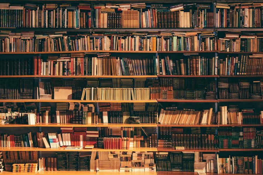 教育:阅读,大语文