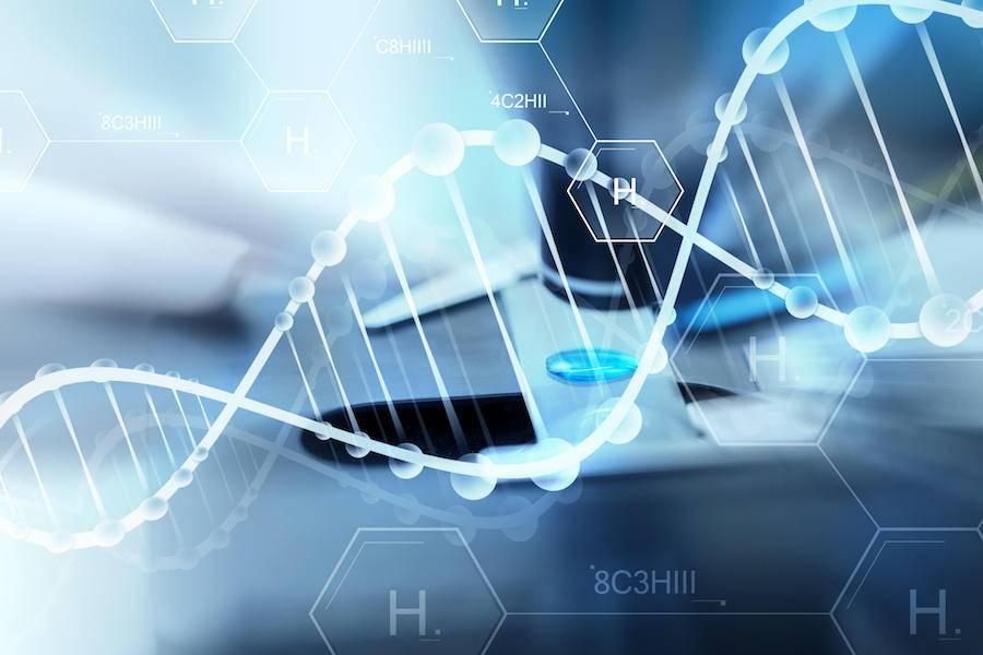 """破译数字化的遗传密码:传统企业组织转型的""""双螺旋""""引擎"""