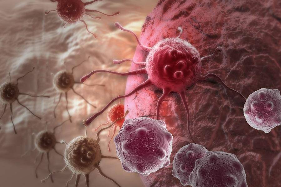 """裸鼹鼠,不怕癌症是因为这个""""超能力""""?"""