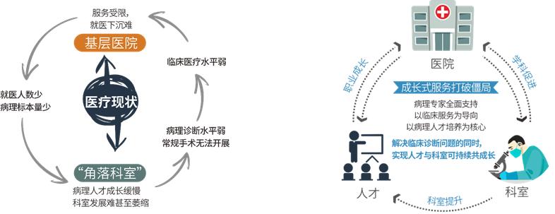 成长式服务模式