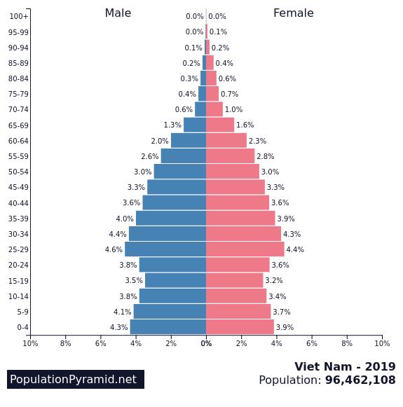 越南2019年人口构成