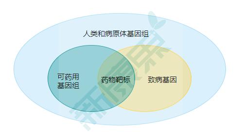 图表2. 药物靶标示意  来源:公开信息,中康产业资本研究中心
