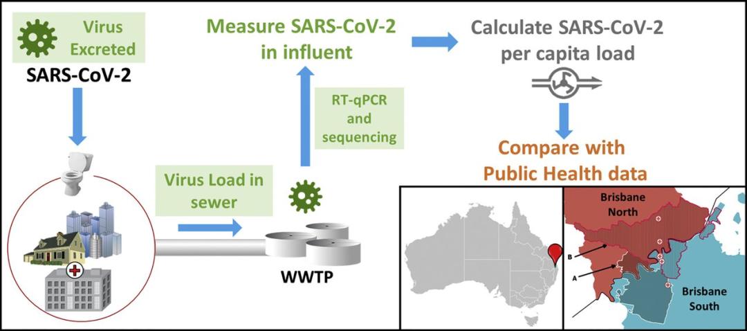 澳大利亚钻研团队挑供的监测流程暗示图(来源:ScienceDirect)