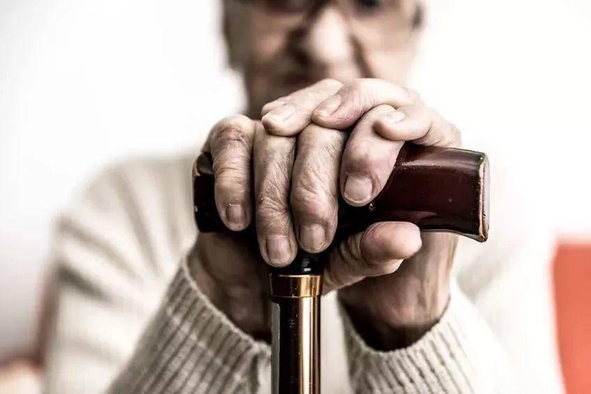 我們為什么會衰老?科學家們在免疫細胞里找到新答案