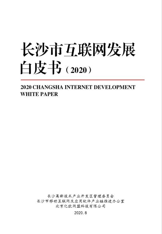 2020长沙市①互联网发展白皮书