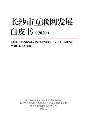 2020長沙市互聯網發展白皮書