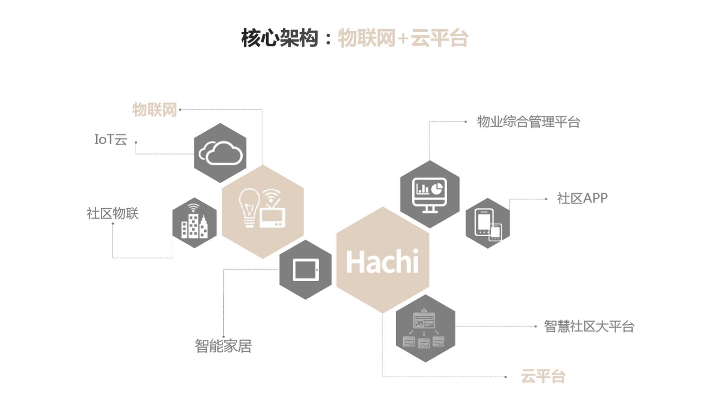 哈奇智能:物联网+云平台.png