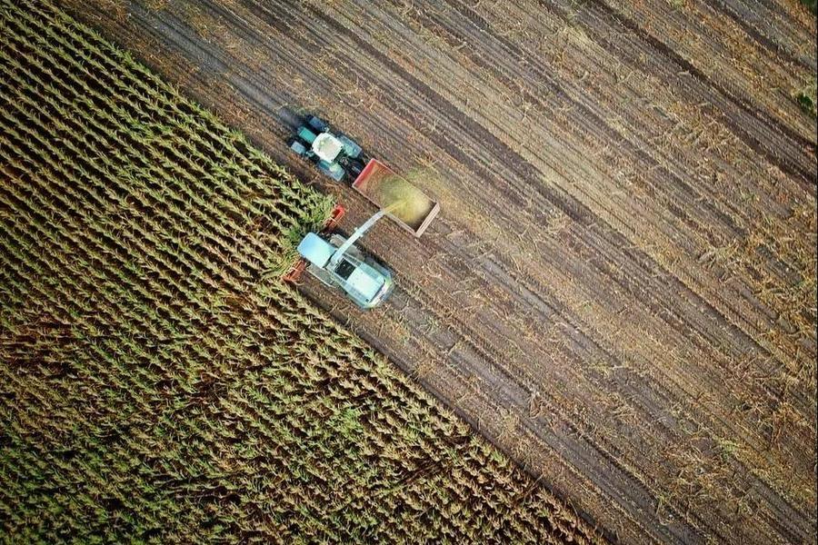 物农科技申请募股筹资2500万美元
