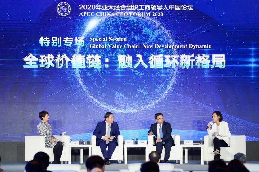 柳青:立足民生去创新,为新发展格局贡献力量